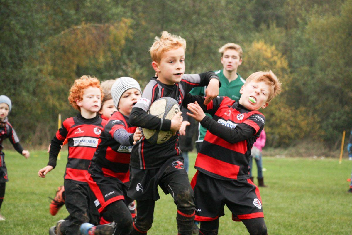 Unsere Rugby Tiger kämpfen vor heimischem Publikum
