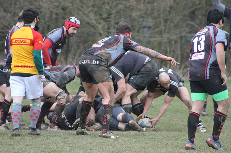 Fünf Spiele, fünf Siege – Rugby-Union Marburg weiterhin ungeschlagen